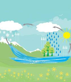 Weather And Water Cycle Test