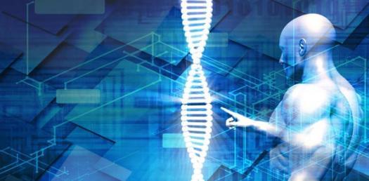 Genetic Engineering Test/quiz