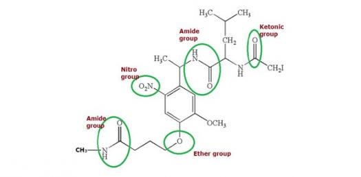 identifying functional groups proprofs quiz