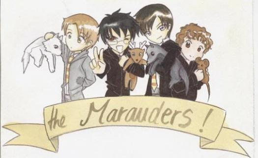 Which Marauder Are You?
