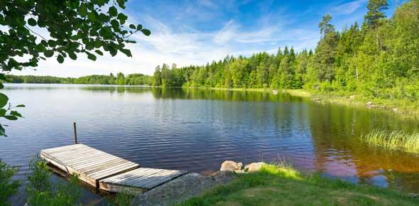 Lake And Pond Biomes