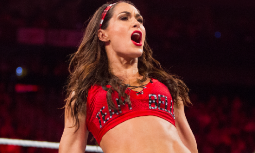 Do You Know About Bella Twins?