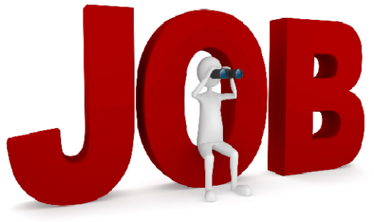 What Job Should I Have?
