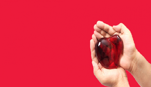 Where Is Your Heart Located? - ProProfs Quiz