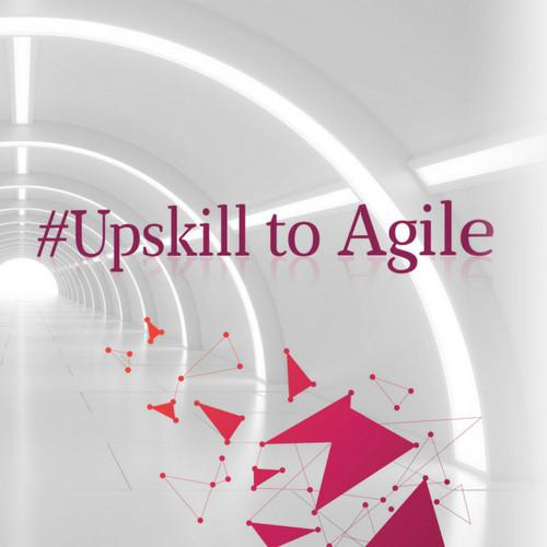 Agile Map & Match Assessment