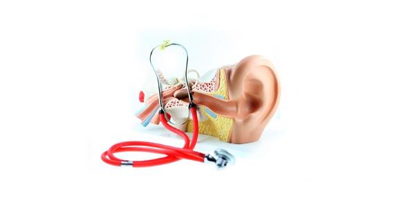 Unit IV: Hearing, Equilibrium, Olfaction & Gustation