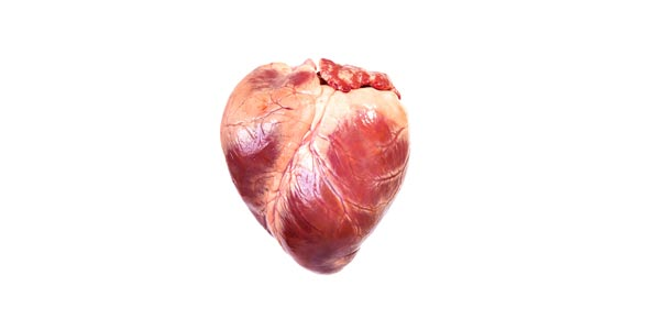 Label the human heart proprofs quiz label the human heart ccuart Choice Image