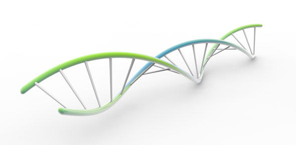 Genetics Quiz Questions & Answers