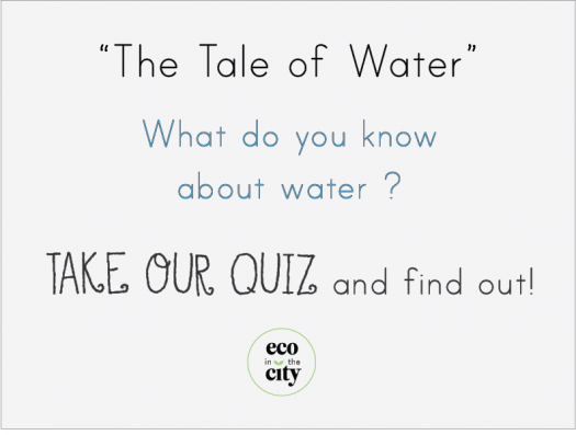 The Tale Of Water