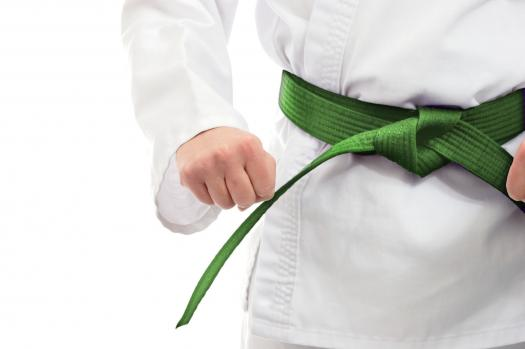 French - Qcm Green Belt - Lean - Examen