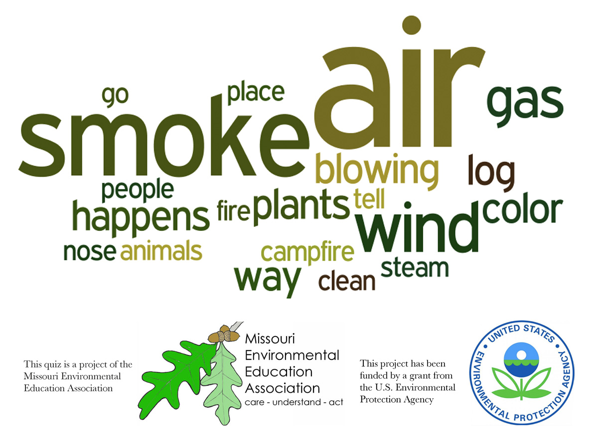 Early Elementary Environmental Literacy - Air Pollution