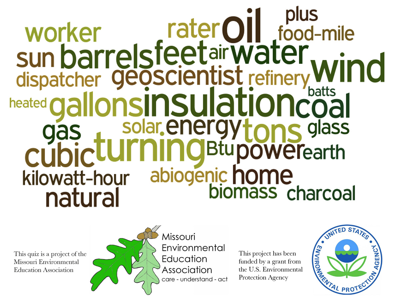 Middle School Environmental Literacy - Energy