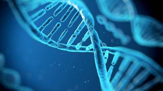 Bio1334 Genetics - Molecular Genetics - DNA And Chromosomes (Lecture One)