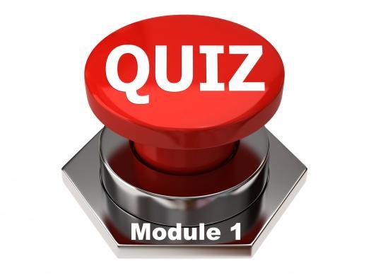 Module 1 Quiz