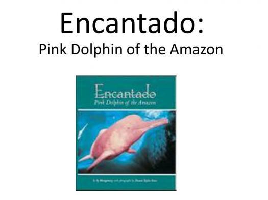 Have You Read Encantado: Pink Dolphin Of The Amazon Book?