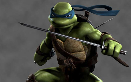 Do You Know Leonardo?