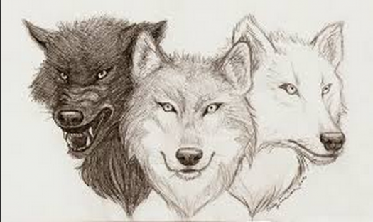 What Is The Name Of Your Wolf Pack? - ProProfs Quiz