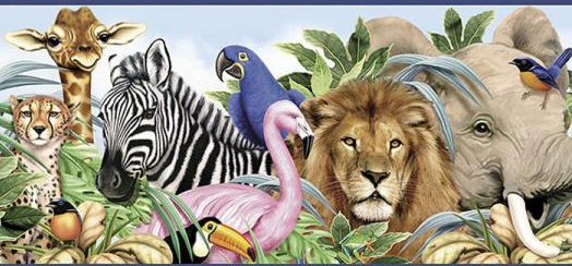 Which Animal Are You? Take This Quiz To Find Out Which Animal You Are!