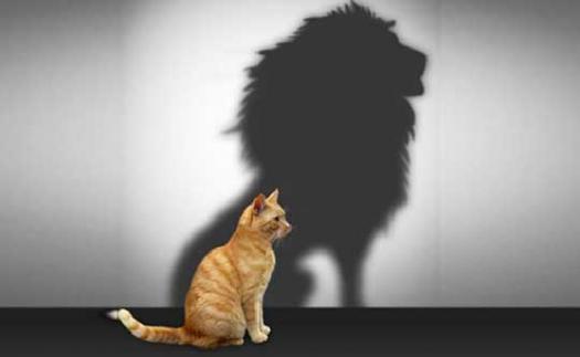 How Is Your Self Esteem?