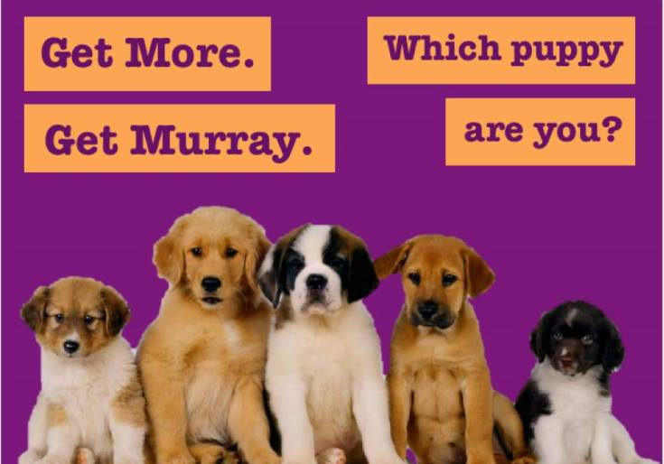 Which Uni Kent Puppy Are You?