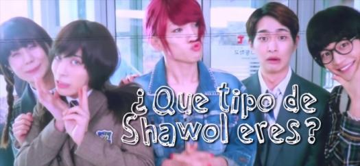 �que Tipo De Shawol Eres?