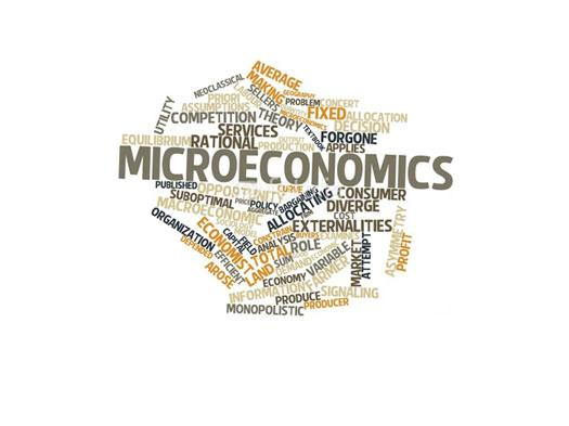 Test How Deep Your Knowledge Is On Microeconomics!