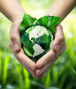 Environmental Science Quiz