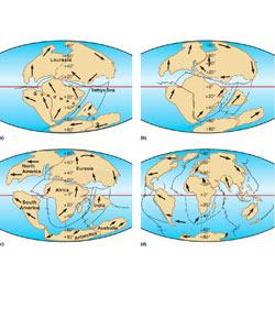 Chapter 12, Section 1: Continental Drift