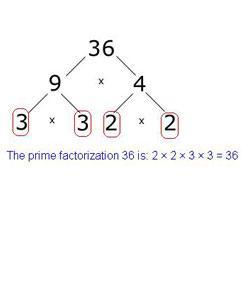 Interesting Quiz Over Prime Factorization