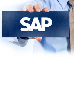 SAP Basis Online Test