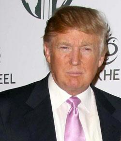 How Well Do You Know About Donald Trump?