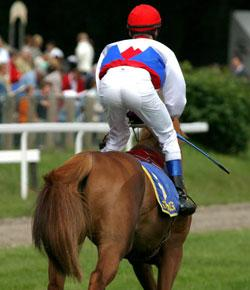 Can You Pass This Horses & Horse Racing?