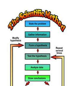 scientific method write up The scientific method is the gold standard for exploring our natural world,  scientists like willis write up the results, send in the paper for peer review.