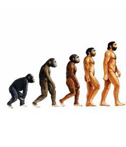 AP Bio Ch 18 Darwin & Evolution