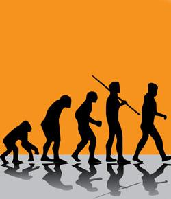 Evolution Practice Quiz (Easy Version)