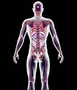 Endocrine Problems (Exam Mode) By Rnpedia.Com