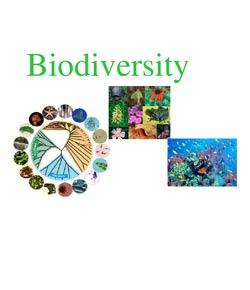 Biodiversity Quizzes Online, Trivia, Questions & Answers