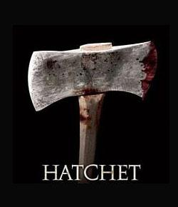 Hatchet Quiz Chapters 5 & 6