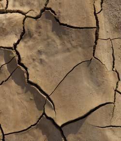 Desertification: Sophie & Mackenzie