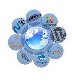 Introduction To Web Development Quiz