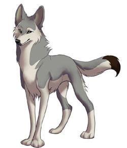Anime Wolves Are Cute And Fearless In Most Cases Some Of Them Have Features That Not Present Real Life Do You Wonder Which Wolf