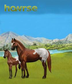 How Much Do You Know About Howrse?
