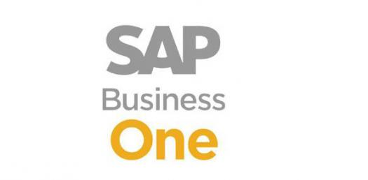 Simulacro Examen  SAP Business One