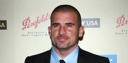 Test Your Knowledge On Dominic Purcell
