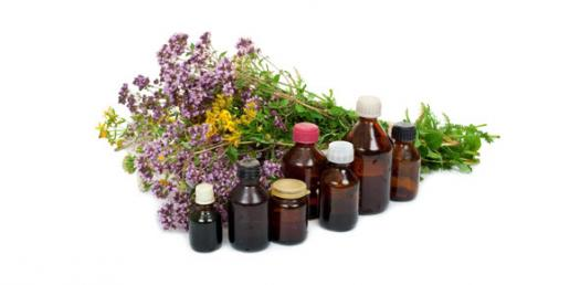 Fun Trivia Questions On Herbal Medicines