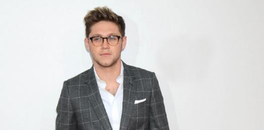 How Well Do You Know Niall Horan? - ProProfs Quiz