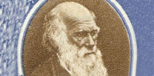 Charles Darwin Quiz