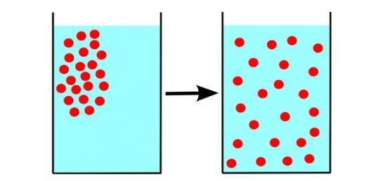 Lab 1 Diffusion And Osmosis Pre-lab Quiz