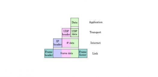 Protocol & Network Quiz