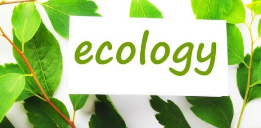 The Ecology Quiz Challenge - 1